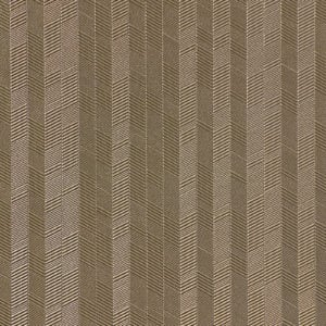 AZ53526AS - Taupe Crazy