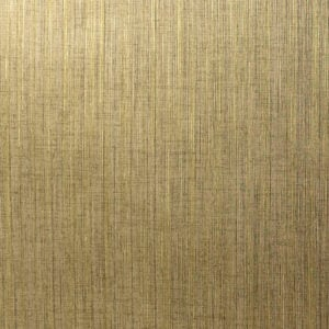 CSD 4852 - Golden Canvas