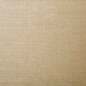LSB 2186 - Raw Silk