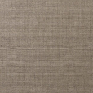 Y45279MC - Satin Bark